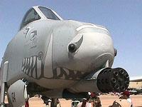 Warthog!