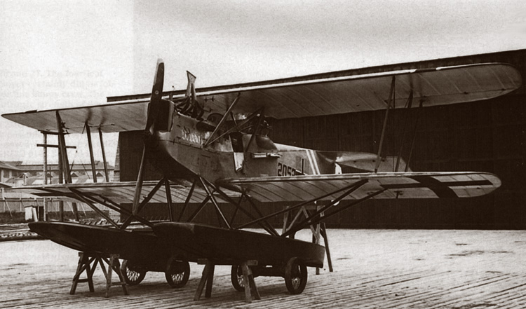 Rise of Flight - Hansa-Brandenburg W.12