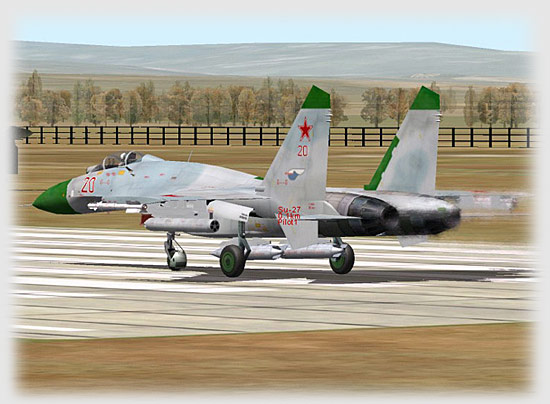 Ready on the runway with A2G weapons