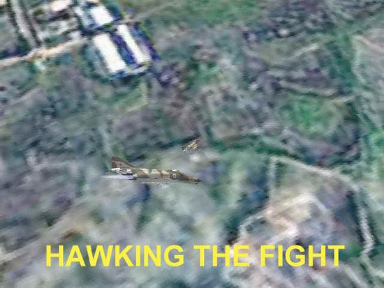 Hawking The Fight