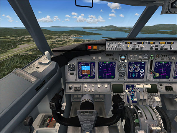 A 737-800 from FSX